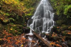 Fairy Falls #1 - Columbia River Gorge