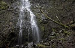 Pheasant Creek Falls in February - Oregon Coast Range